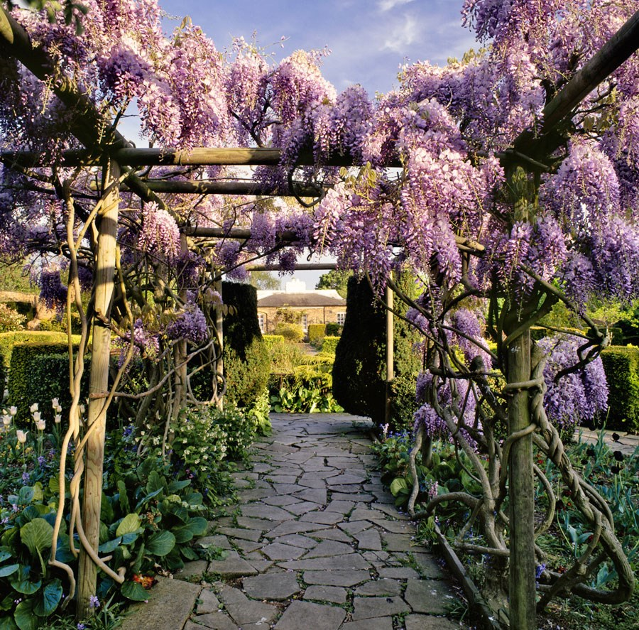Spring Pergola, 2009. Print Status: printed and in stock.  To order a print please contact info@maxarush.com