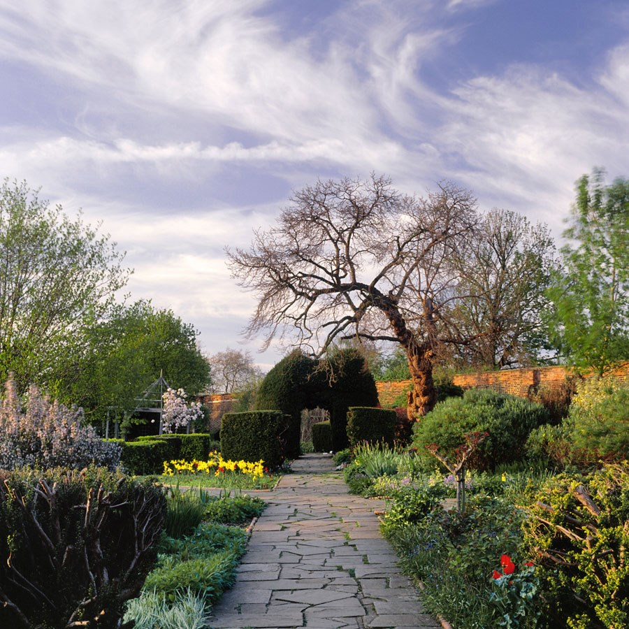 Walled Garden Path and Cirrus Clouds, 2009. Print Status: printed and in stock.  To order a print please contact info@maxarush.com