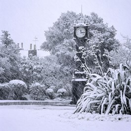 Brockwell Clock In Snowstorm Gallery Group