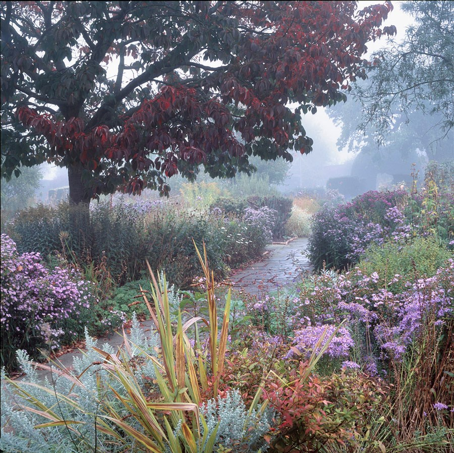 Autumn in the Walled Garden, 2008. Print Status: prints in preparation.  To order a print please contact info@maxarush.com
