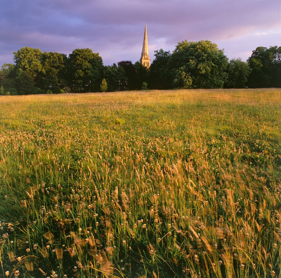 Golden Grass and Trinity Spire, 2010. Print Status: printed and in stock.  To order a print please contact info@maxarush.com