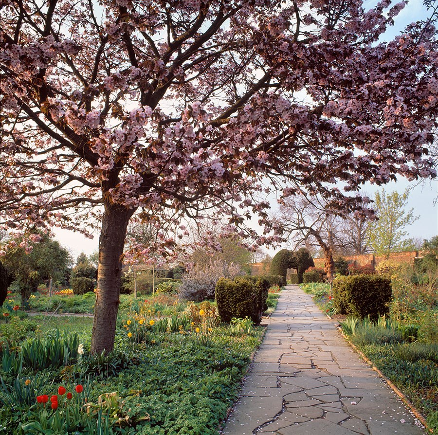 May Evening in the Walled Garden, 2009. Print Status: prints in preparation.  To order a print please contact info@maxarush.com