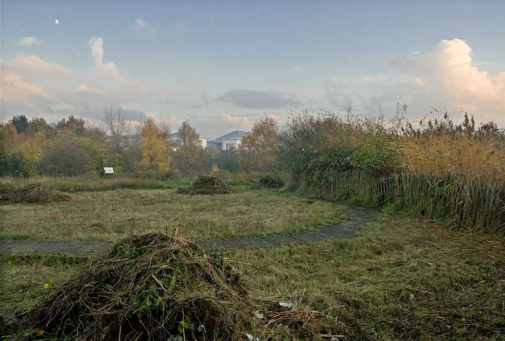 Haystacks, Gillespie Park, 2010. Commission for Islington Council
