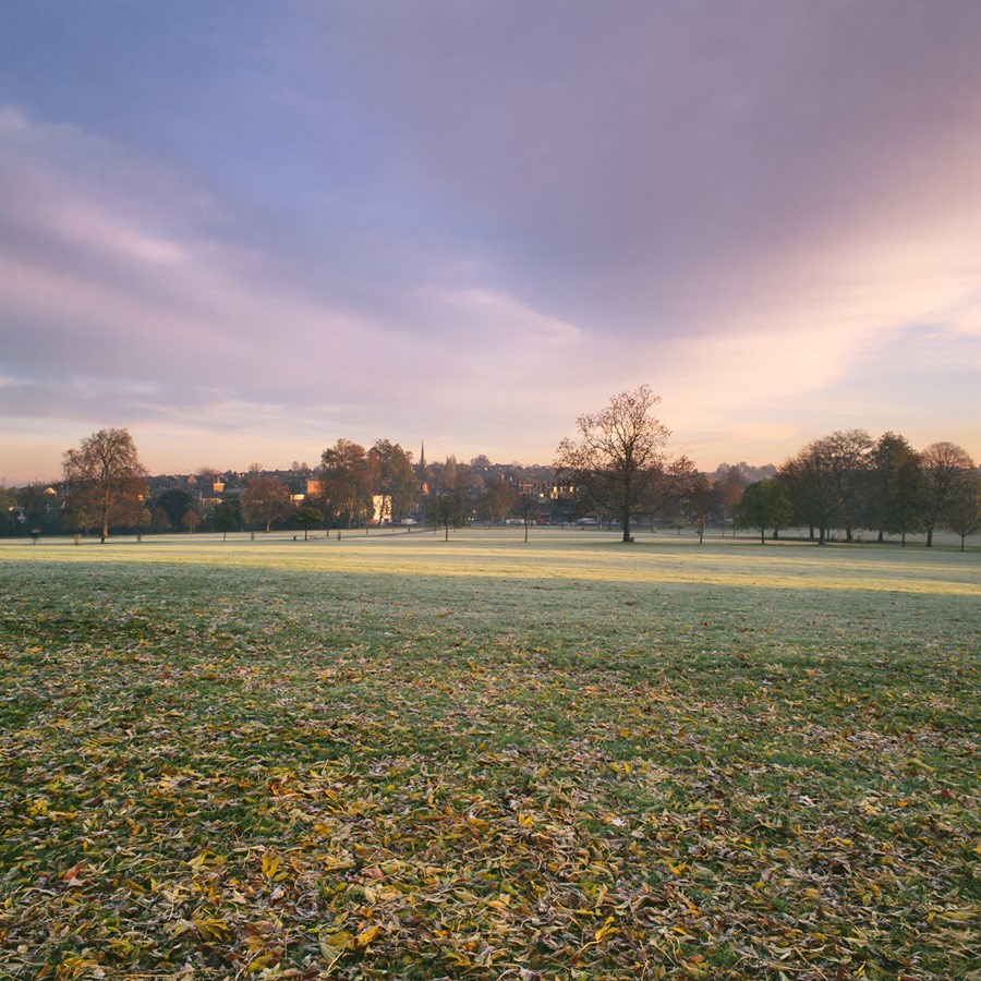 "View Towards Herne Hill on a Golden Autumn Morning, 2010. Framed Print, 14.5"" sq in 50cm sq black aluminium frame. £125"