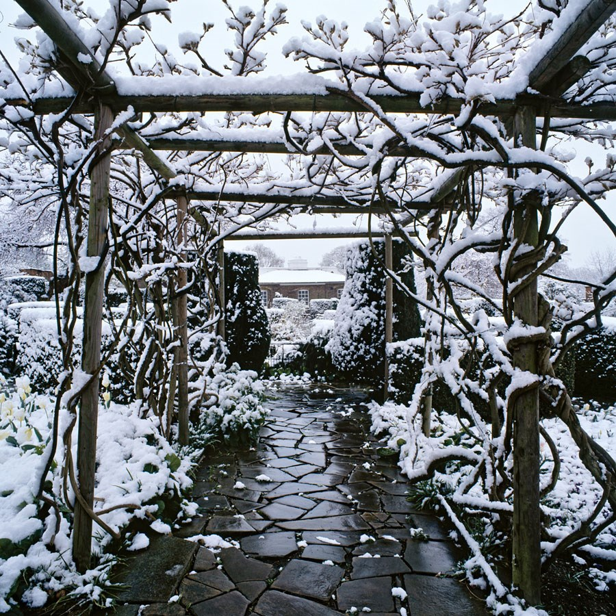 "Snowy Pergola, 2008. Mounted Print, 12"" sq in 40x50cm mount, signed and titled. £37.50"
