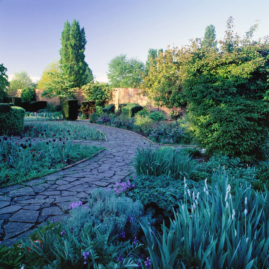 "Early Morning Sun in the Walled Garden, 2009. Mounted Print, 12"" sq in 40x50cm mount, signed and titled. £37.50"