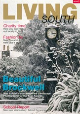 Living -South -January -2012