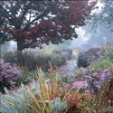 Autumn in the Walled Garden, Brockwell Park, 2008