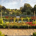 The Sunken Garden, Summer Evening