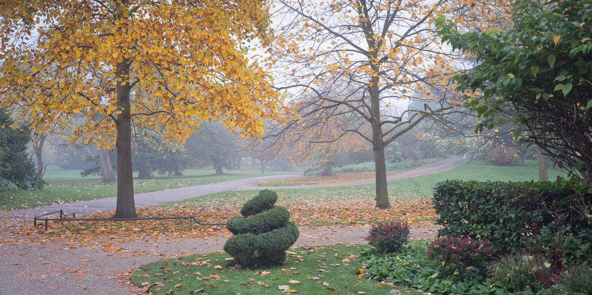 View to the English Gardens, November
