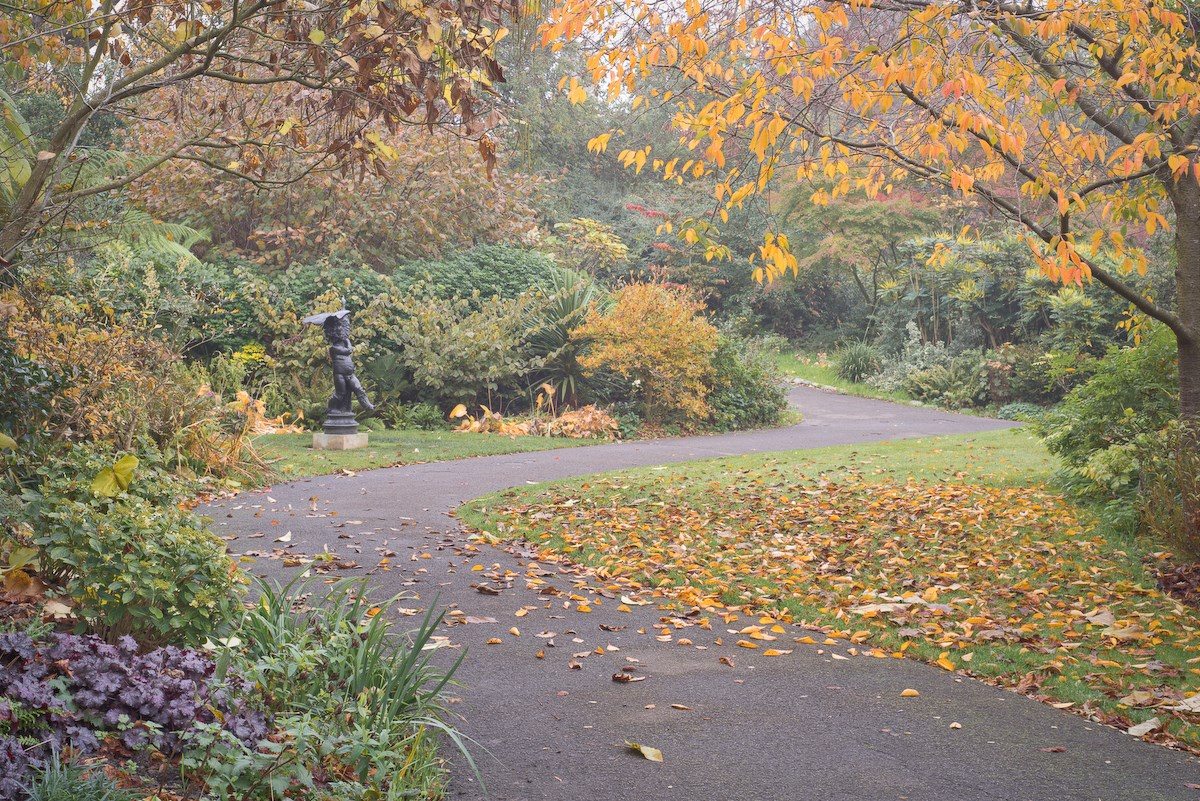 Winding Path with Boy and Duck, The Regent's Park, 2015