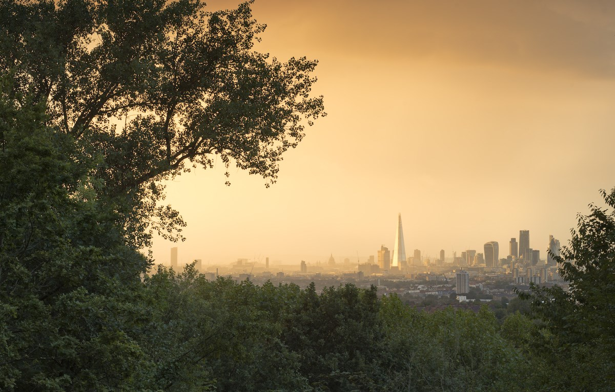 Evening Shower Approaching the City, One Tree Hill, South London, 2015