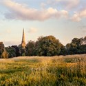 Trinity Spire with June Buttercups, 2013. To order a print please email info@maxarush.com