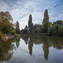 The Lake, August Evening. Brockwell Park.